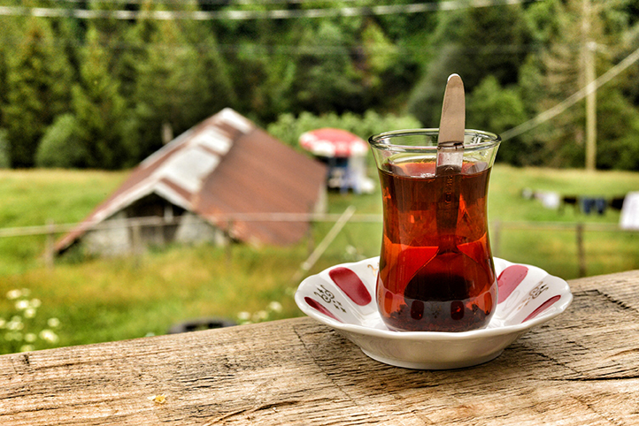 tea, breakfast, forest, nature, wildlife, green tea, black tea, life, spring, British tea, india tea, china tea, guests, catering, fresh air, plenty of oxygen, mountain, pine, live, walk, silence , life, green, blue, red, shinny, rize, ?aml?hem?in, lighting plateau, black sea, turkey, clouds, peaks, valleys, rivers, old houses, memories, experiences and